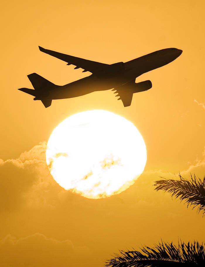aereo al tramonto palme